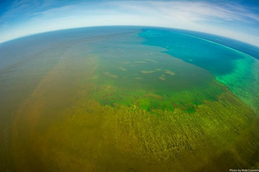 سیلاب تهدیدی برای دیواره بزرگ مرجانی استرالیا