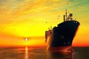 قيمة الصادرات المعدنية بلغت مليارا و178 مليون دولار في 10 أشهر