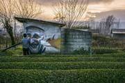 تصاویر | خاصترین نقاشیهای دیواری ایران