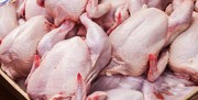 واردات مرغ ضرورتی ندارد/ ۳۵ درصد ظرفیت مرغداریهای کشور خالی است