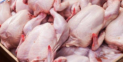واکنش رسمی به فروش مرغ مُرده در بازار: امکان ندارد، عکسها فوتوشاپی است!