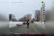 ویدئوی کمک افسر پلیس به یک سگ که در روسیه وایرال شد