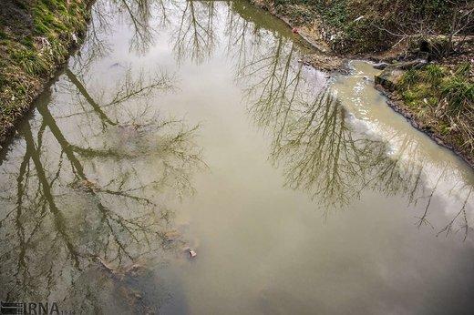 آلودگی رودخانه های گوهررود و زرجوب رشت