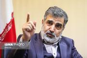 نیروگاه اتمی بوشهر موقتا خاموش شد