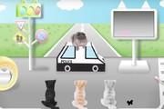 ساخت ویدئوهای آموزشی عبور از خیابان برای گربهها!