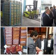 ذخیرهسازی ۷۰۰ تن سیب و پرتقال در لرستان