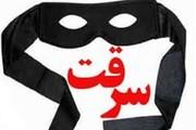 سارقین اماکن خصوصی در دورود دستگیر شدند