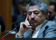 انصاری عضو حزب اتحاد ملت: احزاب در ایران نان انتخابات را خورده اما چوبش را نخوردهاند