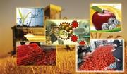 بهبود تراز تجاری غذا و کشاورزی