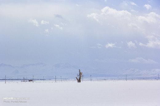 بارش برف در استان چهارمحال و بختیاری