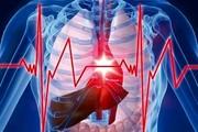 وابستگی طول عمر به میزان تپش قلب در زمان استراحت