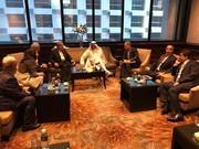 دیدار صالحیامیری با رئیس شورای المپیک آسیا