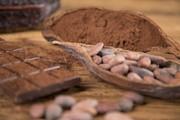 کاهش علائم «ام اس» با مصرف کاکائو