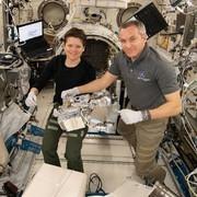 ۲ فضانورد ایستگاه فضایی بینالمللی در یک قاب