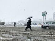 تصاویر | بارش برف در کرمانشاه در آستانه نوروز