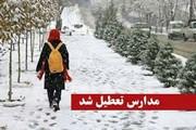 بارش برف سنگین مدارس استان همدان را تعطیل کرد