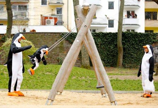 افرادی که لباس پنگوئن پوشیدند، در زمین بازی در شهر کلن آلمان بازی می کنند