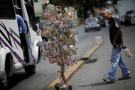 یک مرد به پولهای ونزوئلا که به شکل درخت تزئین شده در شهر کاراکاس نگاه میکند
