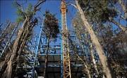 باغکشی در تهران با متری یک میلیون/ سخن از تغییر کاربری ۱۶ هکتار زمین سبز است!