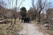 باغ صفاری تبریز احیا میشود