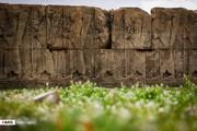 تصاویر | پایتخت زیبای هخامنشیان