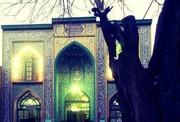 عموی بزرگوار امام زمان(عج) در کدام شهر ایران مدفون است؟
