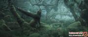 یکی از مخوفترین جنگلهای زمین، اینجاست! +تصاویر
