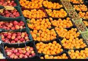 ۲۵۰۰ تن سیب و پرتقال نوروزی آماده توزیع در بازارهای خوزستان است