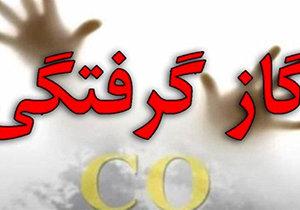 گازگرفتگی ۲ شیرازی را به کام مرگ کشید