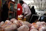 «دلالها» عامل اصلی گرانی مرغ/ با گرانفروشان برخورد جدی میکنیم