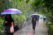 ادامه بارشها در مناطق غربی/ هوای بهاری برای لحظه تحویل سال