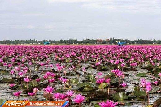 دریاچه نانگ هان کامفاواپی تایلند
