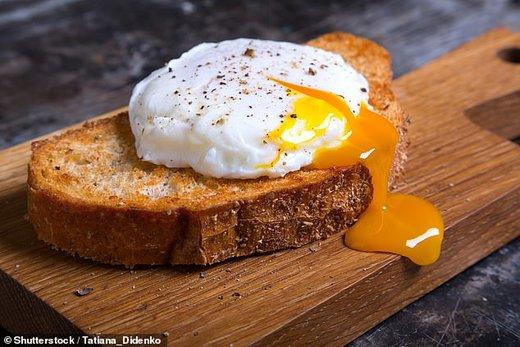 نظر دانشمندان دوباره تغییر کرد!/ تخممرغ نخورید!