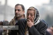 تصاویر | واکنش مردم به قیمتهای شب عید