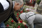 تصاویر   حال و هوای دلنشین بهار در بازار گل تهران