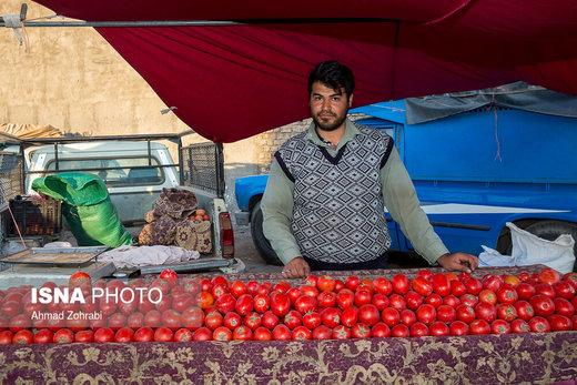 محمد خالق پور، متولد ۱۳۷۳، از ۴ سال قبل در روز بازار قم به میوه فروشی مشغول است، وی با دارا بودن مدرک کارشناس حسابرسی مالیاتی هیچ گونه شغلی پیدا نکرد و به دلیل بیکاری زیاد مجبور به دست فروشی میوه در روز بازار شد