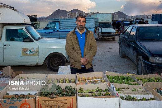 عباس عرفانی مهر، متولد ۱۳۵۱، از ۵ ماه قبل در روزبازار قم به گل فروشی مشغول است، او دبیر آموزش و پرورش است و به دلیل مشکلات اقتصادی، افزایش قیمتها و درآمد کم فرهنگیانی که تنها به شغل معلمی مشغول هستند، مجبور به حضور در این بازار شده است