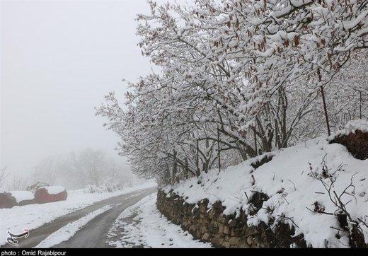 آخرین وضعیت راهها/ بارش برف و باران در جادههای ۸ استان