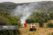 هشداری به گردشگران: زندان در انتطار عاملان آتشسوزی در جنگلها