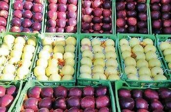 بازار آشفته میوه در همدان