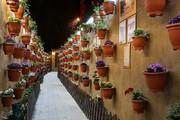 تصاویر | المانهای نوروزی در مبارکه اصفهان