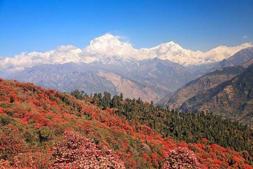 فصل بهار در شهر پوخارا نپال