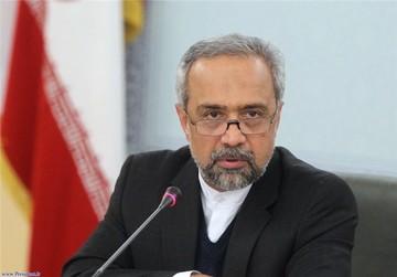 نهاوندیان:آمریکا حق وتوی درخواست وام ایران از صندوق بینالمللی پول را ندارد