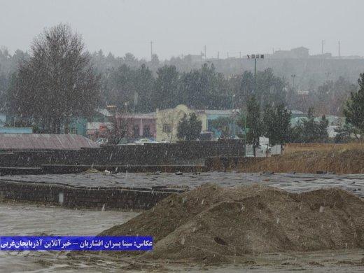 بارش برف و باران در ارومیه / 5فروردین 98