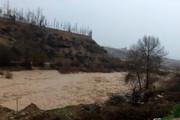 مونوپاد | جریان سیلاب در پل مهریان یاسوج