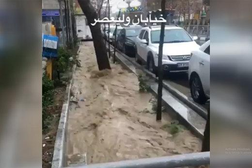 مونوپاد | وضعیت خیابان ولیعصر (عج) پس از بارش باران