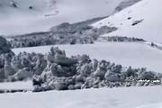 فیلم | سقوط بهمن ۴ متری در خوانسار