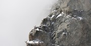 انتقاد انجمن کوهنوردان از لغو مجوز ۲ باشگاه: شرایط را وخیمتر میکنید