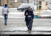 تصاویر | بارش برف بهاری در سنندج