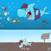 ستاره محبوب؛ کوسه خشمگین یا ماهی کوچولوی ناتوان؟!